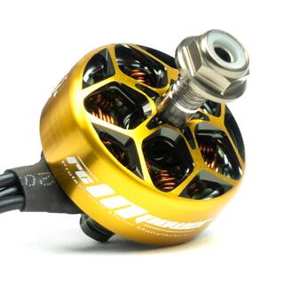 RCINPower Wasp Major 22.6-6.6 2420kv Gold